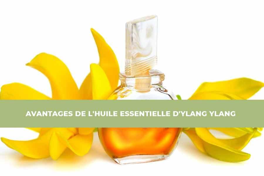 huile de Ylang Ylang